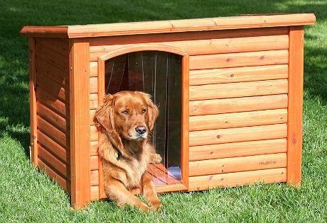 bouwtekening hondenhok