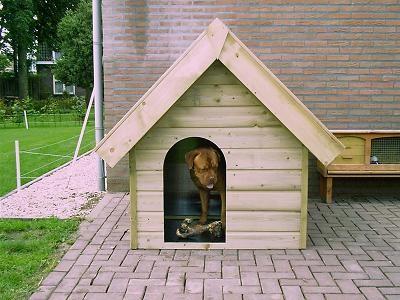 bouwtekening hondenhok - veiligheid