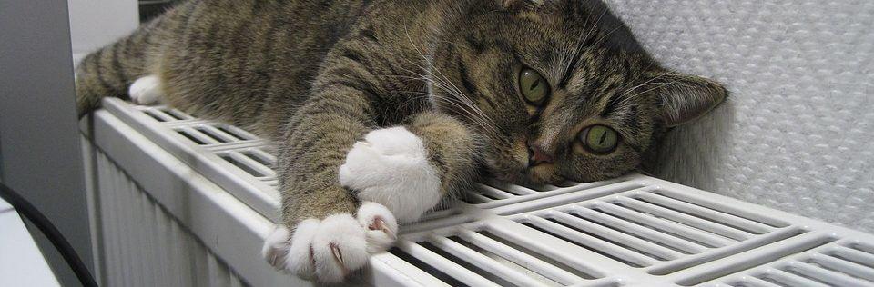radiatorombouw zelf maken