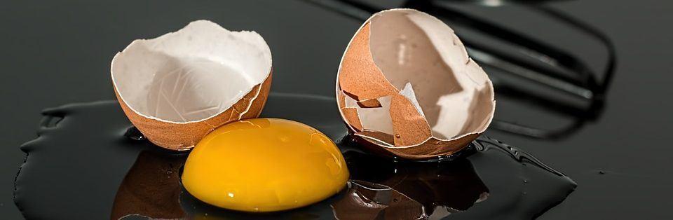 hoeveel eieren legt een kip per dag