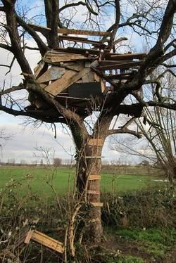 Een hele goedkope boomhut