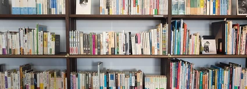 Een hele grote boekenkast met erg veel boeken